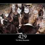 HTTP 429 Too Many Requests